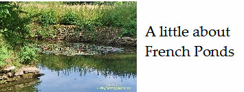 All-about-french-farm-and-garden-ponds